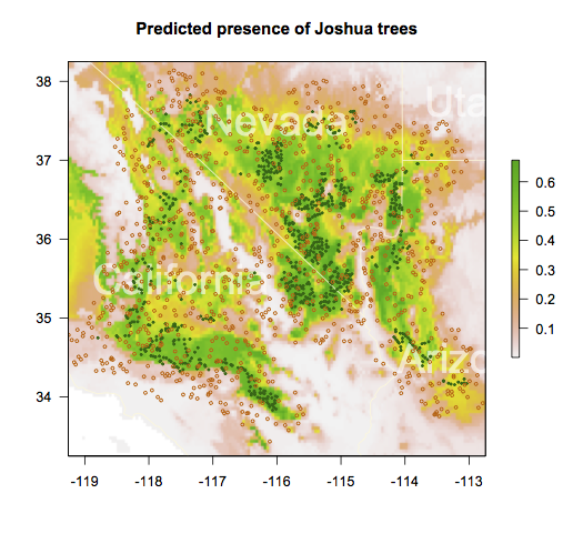 Probability of Joshua trees, given our Maxent model and the Bioclim data.