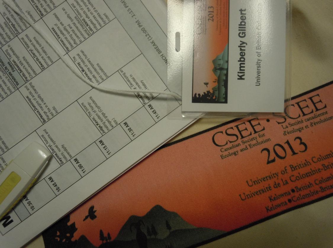 CSEE 2013