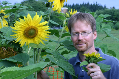 hybridization and the evolution ecology of sunflowers Department of evolution, ecology, & organismal biology 318 w 12 th ave evolutionary ecology, crop-wild hybridization & transgenic weeds, invasive species wild hybrid sunflower under competitive conditions.