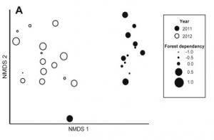 (Belisle et al, Figure 2A.)