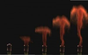 """Mosses fire spores from the stalks in a tiny """"mushroom cloud"""" giving the spores an extra boost to catch the wind. ©Joan Edwards and Dwight Whitaker"""