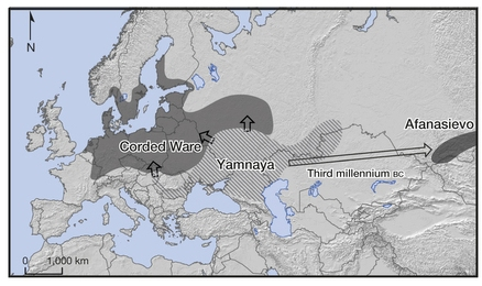 Findings of Allentoft et al. (2015) depicting routes of migration of the Yamnaya culture into Europe and Asia. Image courtesy: Figure 1 of Alltentoft et al. (2015).