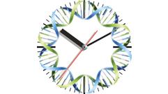 2015-02_clock