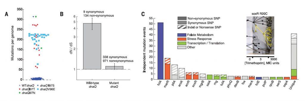 Baym et al., 2016. Figure 3.