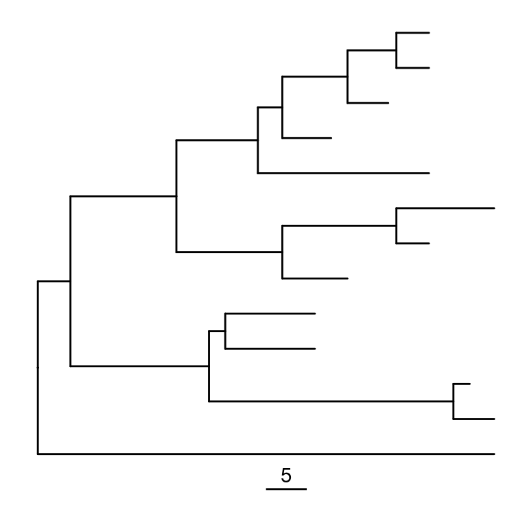 Phylogenetic Trees In R Using Ggtree